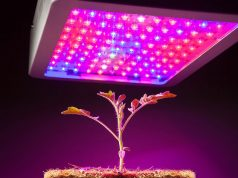 Top 3 Latest Marijuana Technology Innovations of 2017