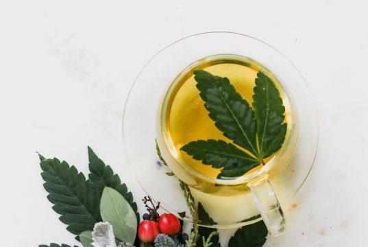 Cannabis on a white surface